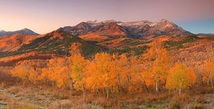 Panoramic landscape with Mount Timpanogos. Stock Photography