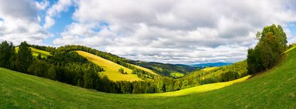 Forested hills with meadows on a sunny day. Panoramic landscape in mountain. forested hills with meadows on a sunny day. cloudy sky stock photography