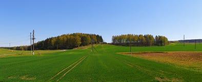 Panoramic landscape Royalty Free Stock Image
