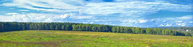 Panoramic landscape of sunny autumn forest royalty free stock photography
