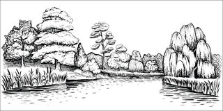 Panoramic landscape with trees and river, vector hand drawn illustration. Stock Photo