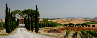 Panoramic landscape of Tuscany. With tree lined road leading to villa in foreground, Italy Stock Images