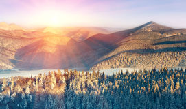 Panoramic landscape in the winter mountains at sunny day. Stock Image