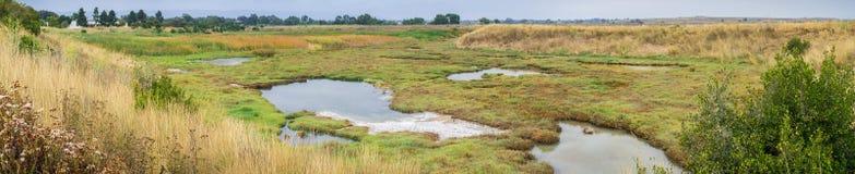 Panoramic Marsh Landscape, Shoreline Park, Mountain View, California stock photos