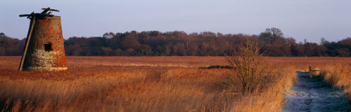 Panoramic Marshes Royalty Free Stock Photos