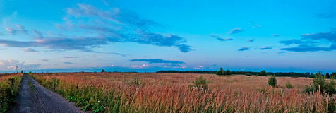 Panoramic meadows and sky. Panoramic landscape with meadows and blue evening sky Stock Image