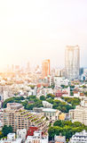 Panoramic modern cityscape building bird eye aerial view from tokyo tower under sunrise and morning blue bright sky in Tokyo, Japa Royalty Free Stock Image