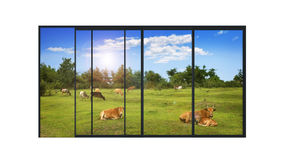 Panoramic modern window with a rural landscape. Isolated panoramic 4 parts sliding modern aluminum window  with a rural landscape and farm animals Stock Photo