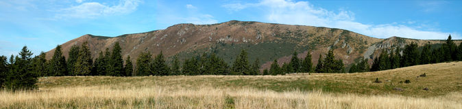 Panoramic mountain. A panoramic view of Vladeasa mountains Royalty Free Stock Images