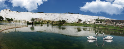 Panoramic Mountain Lake And Loving Swans Royalty Free Stock Photos