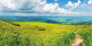 Panoramic mountain landscape in summer. Green grassy hills and slopes. path downhill through the meadow. sunny weather with fluffy clouds on the sky. rain in stock photos