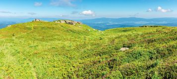 Panoramic mountain landscape in summertime. Green grassy hills with bunch of rocks in the distance. path through the meadow. sunny weather with fluffy clouds stock photography