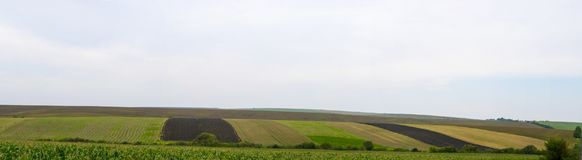 Panoramic multi-colored fields Stock Images