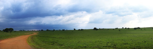 Panoramic nature reserve royalty free stock images