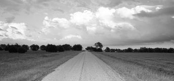 Panoramic Open Graven Road Rural Texas Black and White stock photography