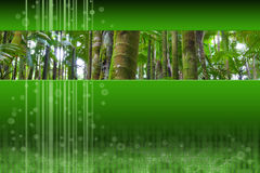 Panoramic palm forest inset on green modern design. Design with panoramic photo of palm forest inset on green futuristic technology energetic artistic background Stock Photos