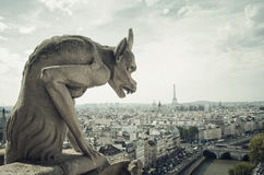 Panoramic of Paris with Gargoyle Stock Photo