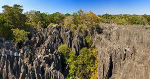 Panoramic Petit Tsingy Royalty Free Stock Images