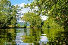 Panoramic Photo of Bushes Near Pond Royalty Free Stock Photo