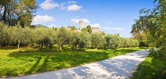 Panoramic photo of the famous medieval citadel of Vicopisano Italy - Tuscany - Pisa. The citadel of Vicopisano was was built in 1434 and designed by the great stock photo