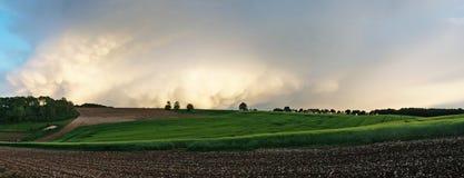 Panoramic photo of the field Stock Photo