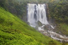Panoramic photo landscape / Waterfall hidden in the tropical jungle surrounded by a natural swimming pool with clear fresh water. stock image