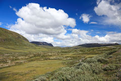 Panoramic photo of norwegian landscape. Royalty Free Stock Photo