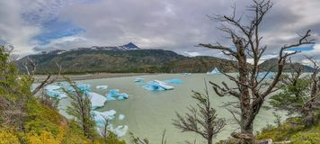 Panoramic picture of Lago Grey in Patagonia with floating iceberg royalty free stock photo