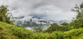 Panoramic picture of rainforest on Dominika island during stormy weather royalty free stock images