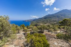 Panoramic picture of Soller royalty free stock image