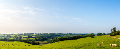 Panoramic Picture of the South Somerset Countryside. UK royalty free stock photo