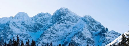 Panoramic Polish Tatras in winter. Stock Image