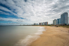Panoramic in Punta del Este. Uruguay Stock Image