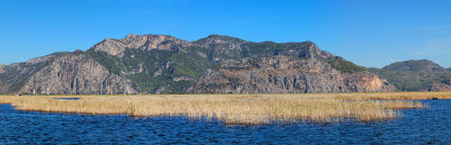 Panoramic reed water landscape, near Fethiye, Turkey Royalty Free Stock Photos