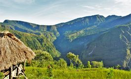 The panoramic rice terraces viewed from a farm stock image
