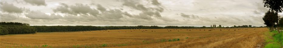 Panoramic rural landscape. Showing field and horizon royalty free stock photography