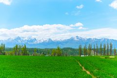 Panoramic rural landscape with mountains. Vast blue sky and white clouds over farmland field in a beautiful sunny day. In springtime royalty free stock image