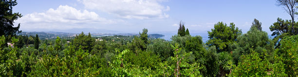 Panoramic scene with forest on Corfu Island, Greece Stock Images