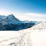 Panoramic scenery above Grindelwald, Stock Photography