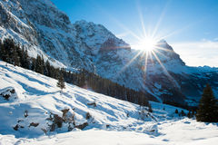 Panoramic scenery above Grindelwald Stock Image