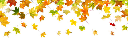 Panoramic seamless autumn background Stock Images