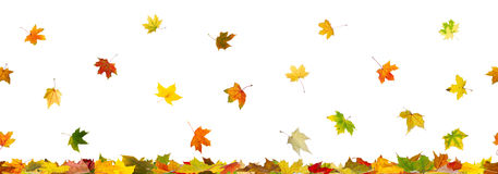 Panoramic seamless autumn background Stock Image