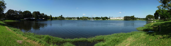 Panoramic shot of calm lake. A panoramic shot of a large lake in Florida surrounded by grass and trees along its banks Royalty Free Stock Photo