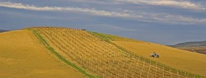 Panoramic sicilian hill Stock Photos