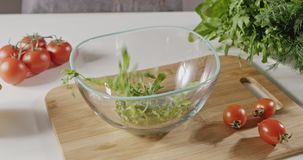 The green wet leaves of the arugula fall into a glass bowl. Preparation of salad greens on a background with tomatoes stock footage