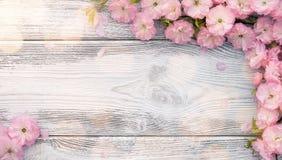 Panoramic spring background Royalty Free Stock Photo