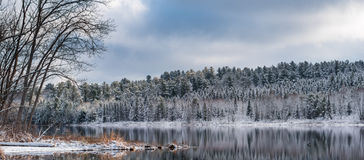 Panoramic stillness in winter forests.  Reflections on still lake water. Royalty Free Stock Photo