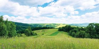 Panoramic summer countryside in mountains. Wonderful sunny day scenery. grassy rural fields and meadows with wild herbs. hills and mountains in the distance royalty free stock photography
