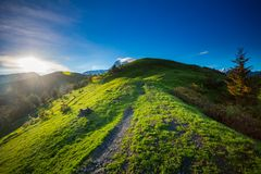 Mountain panorama summer landscape. Georgia Royalty Free Stock Images