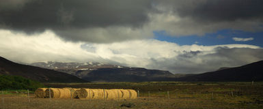 Panoramic sunlit straw bales Royalty Free Stock Photos
